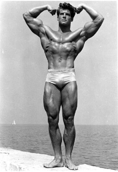 high def body frank zane download pdf